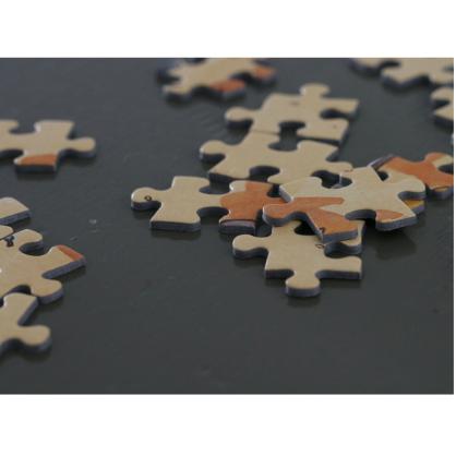 artcile8 puzzle